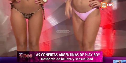 Argentine Playboy bunnies in At once (Peru)